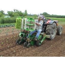 Полуавтоматические рассадопосадочные машины Sfoggia Plantec One